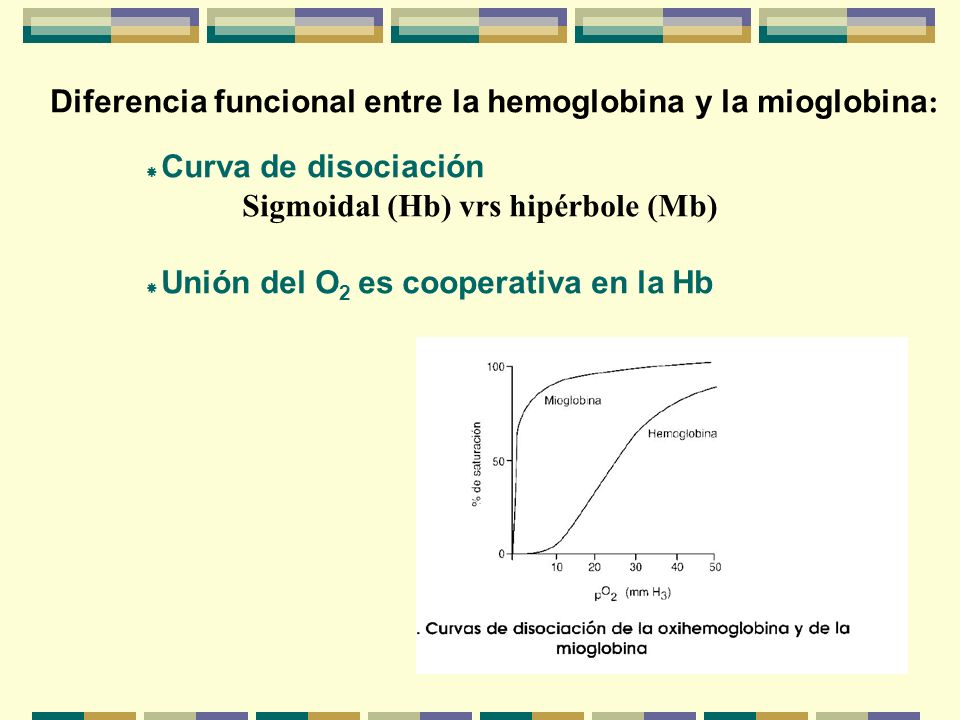 Diferencia funcional entre la hemoglobina y la mioglobina: