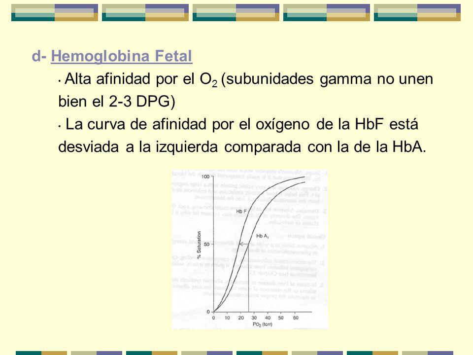 d- Hemoglobina Fetal Alta afinidad por el O2 (subunidades gamma no unen bien el 2-3 DPG)