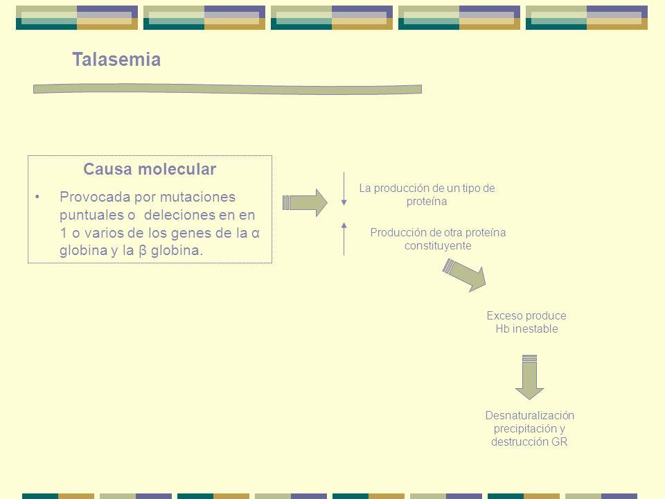 Talasemia Causa molecular