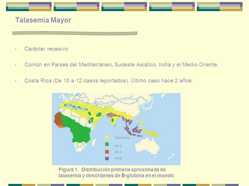 Talasemia Mayor Carácter recesivo