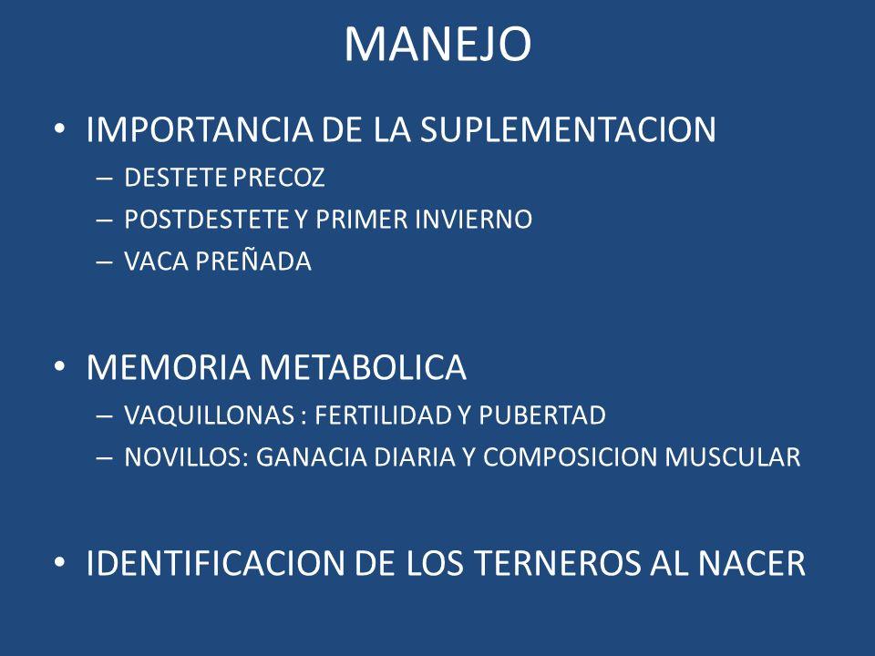 MANEJO IMPORTANCIA DE LA SUPLEMENTACION MEMORIA METABOLICA