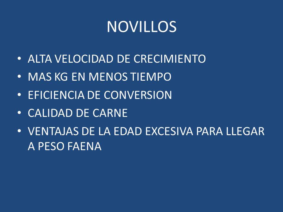 NOVILLOS ALTA VELOCIDAD DE CRECIMIENTO MAS KG EN MENOS TIEMPO
