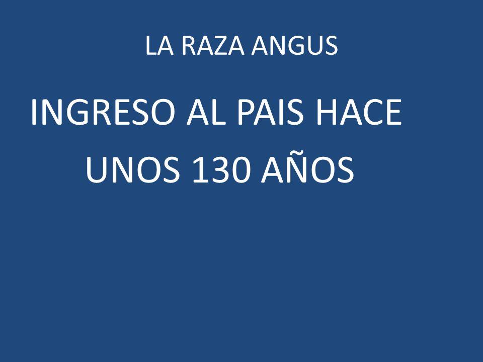 INGRESO AL PAIS HACE UNOS 130 AÑOS