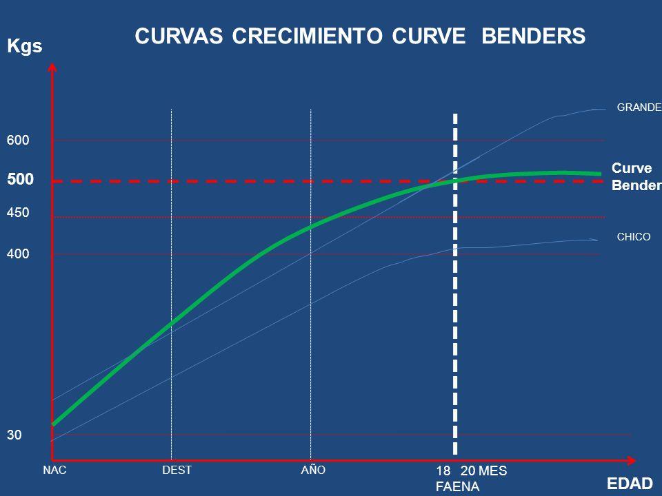 CURVAS CRECIMIENTO CURVE BENDERS