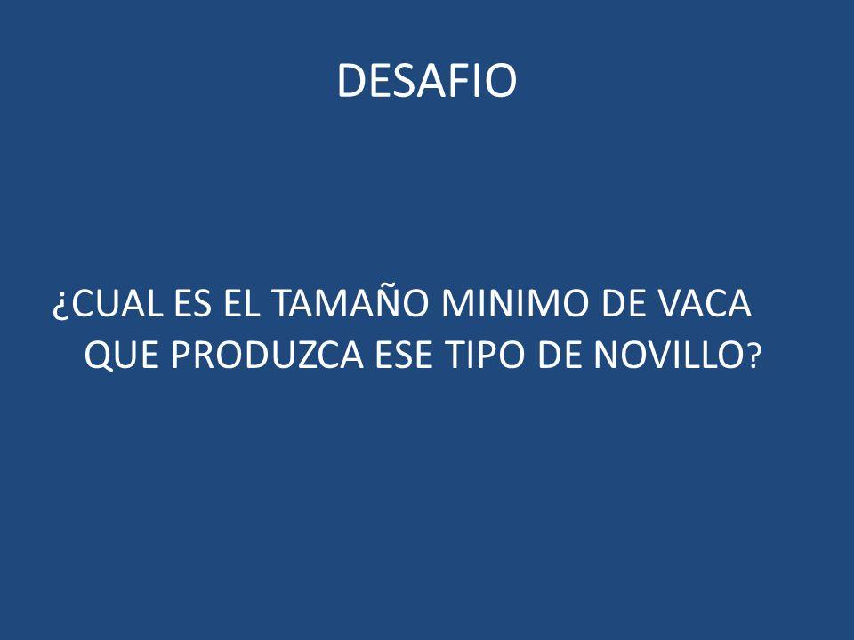 DESAFIO ¿CUAL ES EL TAMAÑO MINIMO DE VACA QUE PRODUZCA ESE TIPO DE NOVILLO