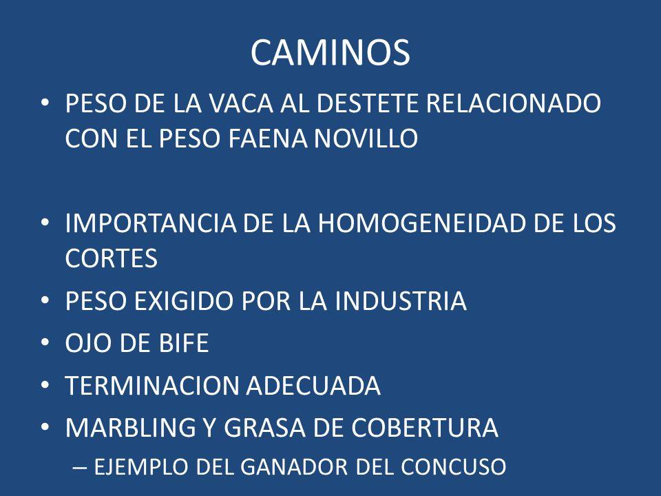 CAMINOS PESO DE LA VACA AL DESTETE RELACIONADO CON EL PESO FAENA NOVILLO. IMPORTANCIA DE LA HOMOGENEIDAD DE LOS CORTES.