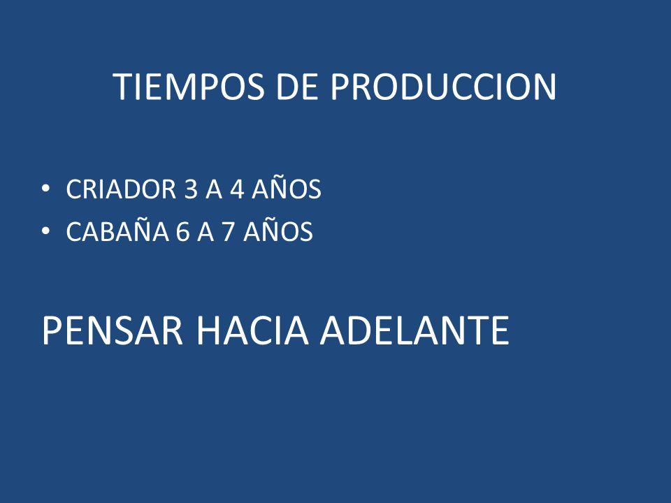 PENSAR HACIA ADELANTE TIEMPOS DE PRODUCCION CRIADOR 3 A 4 AÑOS