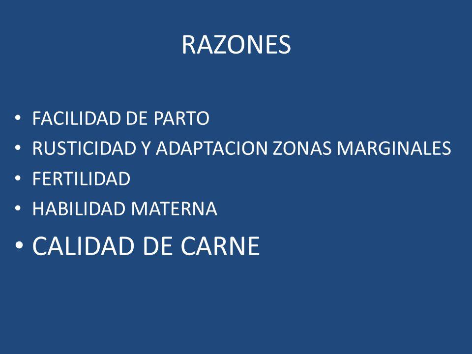 RAZONES CALIDAD DE CARNE FACILIDAD DE PARTO