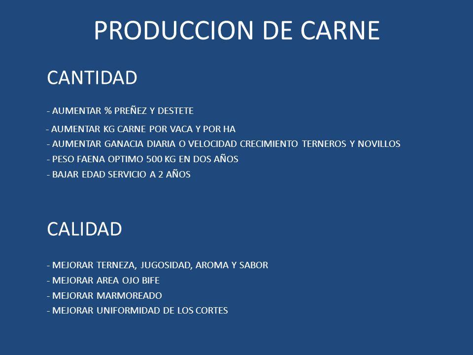 PRODUCCION DE CARNE CANTIDAD - AUMENTAR % PREÑEZ Y DESTETE