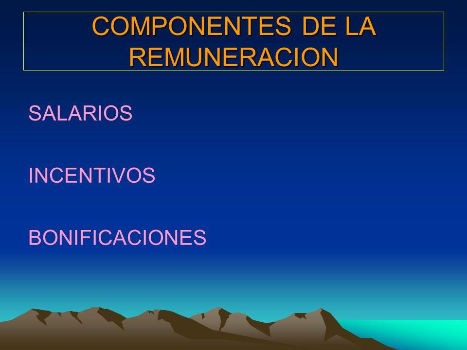 COMPONENTES DE LA REMUNERACION
