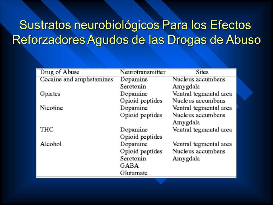 Sustratos neurobiológicos Para los Efectos