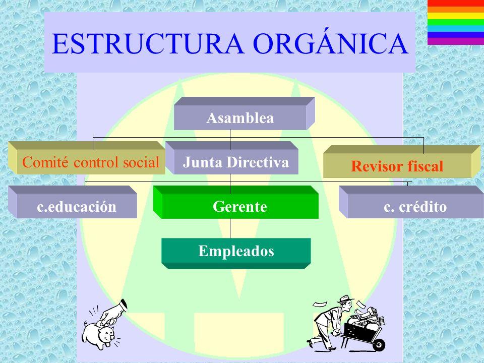 ESTRUCTURA ORGÁNICA Asamblea Comité control social Junta Directiva