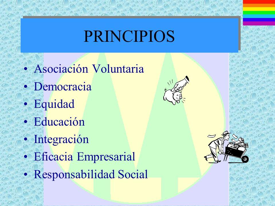 PRINCIPIOS Asociación Voluntaria Democracia Equidad Educación