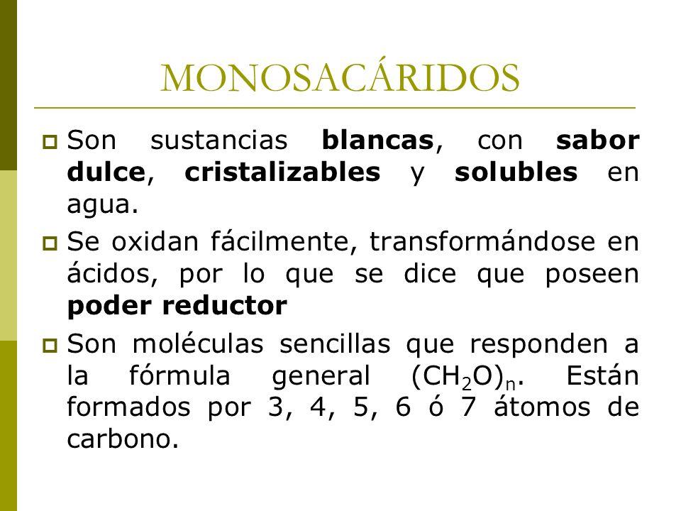 MONOSACÁRIDOS Son sustancias blancas, con sabor dulce, cristalizables y solubles en agua.