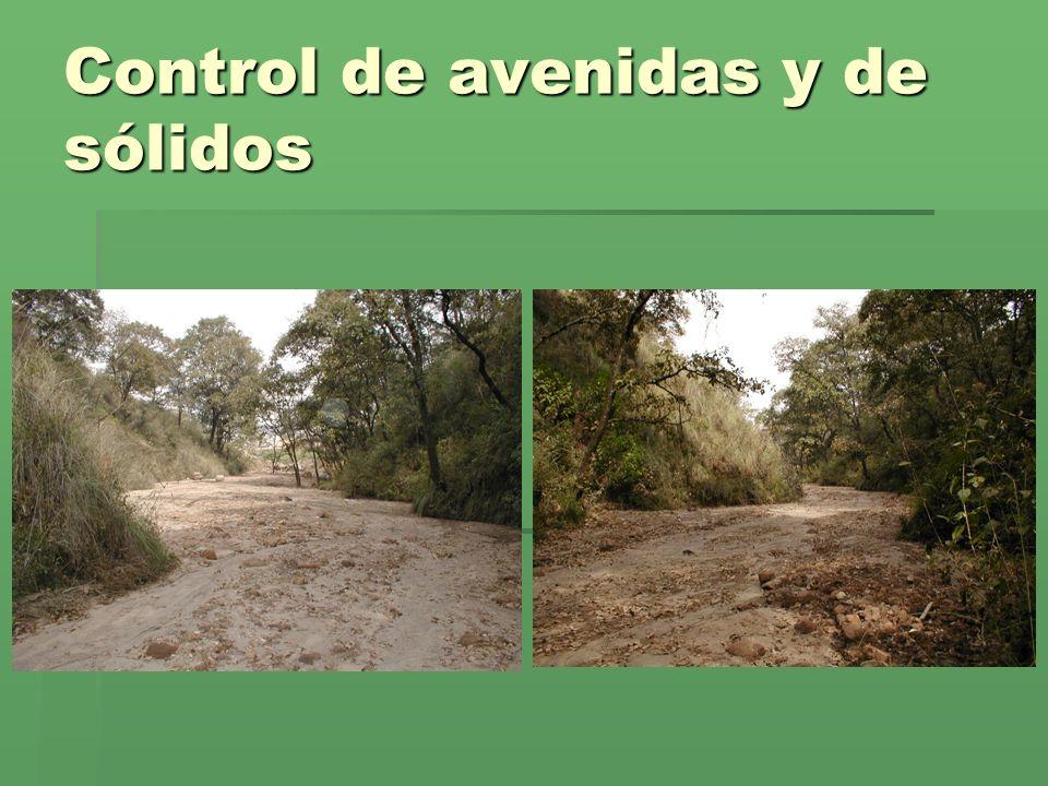Control de avenidas y de sólidos