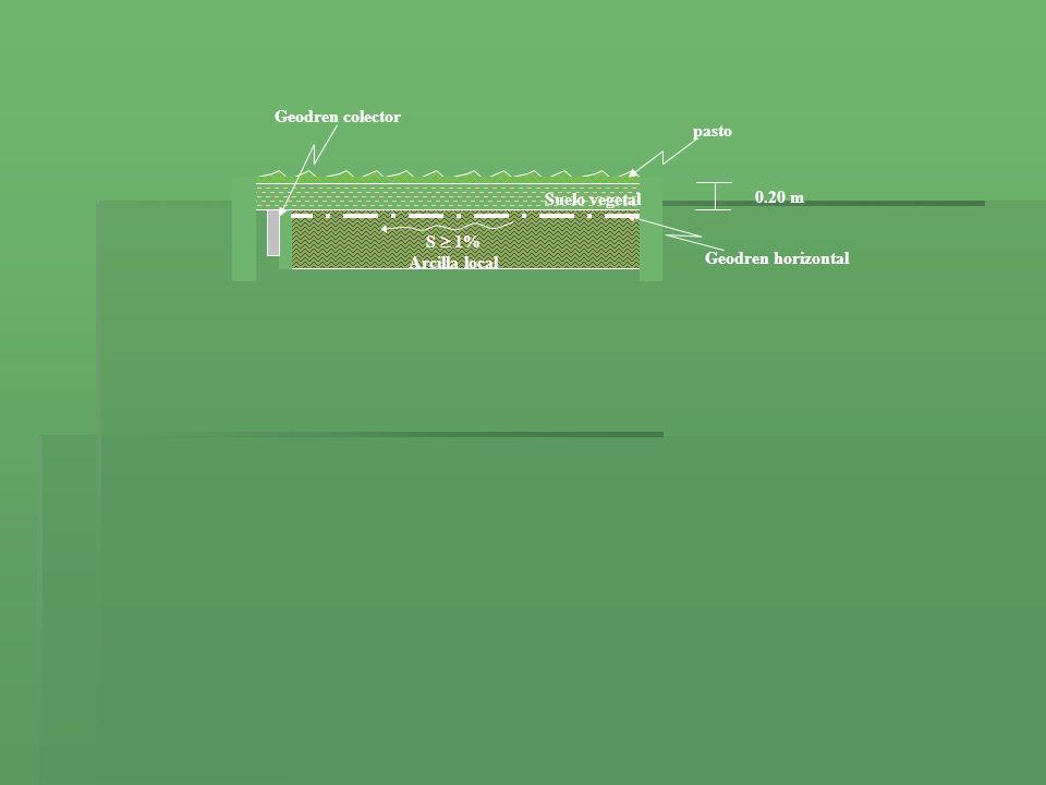 S  1% Arcilla local Suelo vegetal 0.20 m Geodren horizontal Geodren colector pasto