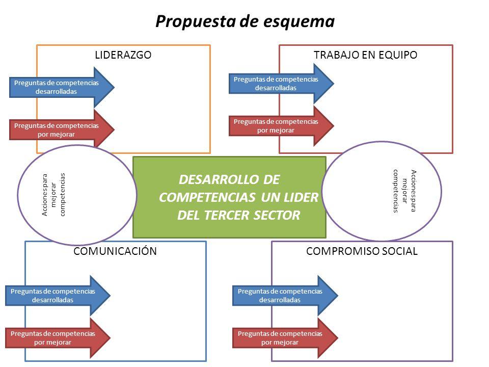 DESARROLLO DE COMPETENCIAS UN LIDER DEL TERCER SECTOR