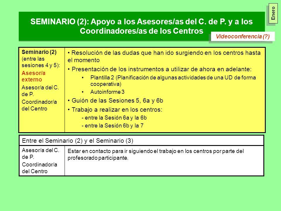 Enero SEMINARIO (2): Apoyo a los Asesores/as del C. de P. y a los Coordinadores/as de los Centros. Videoconferencia ( )