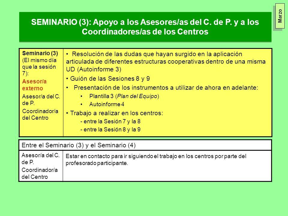 SEMINARIO (3): Apoyo a los Asesores/as del C. de P