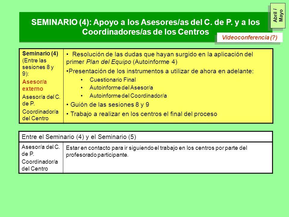 Abril / Mayo SEMINARIO (4): Apoyo a los Asesores/as del C. de P. y a los Coordinadores/as de los Centros.