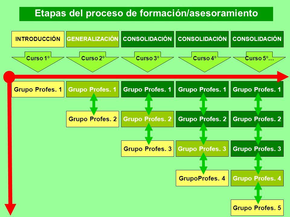 Etapas del proceso de formación/asesoramiento