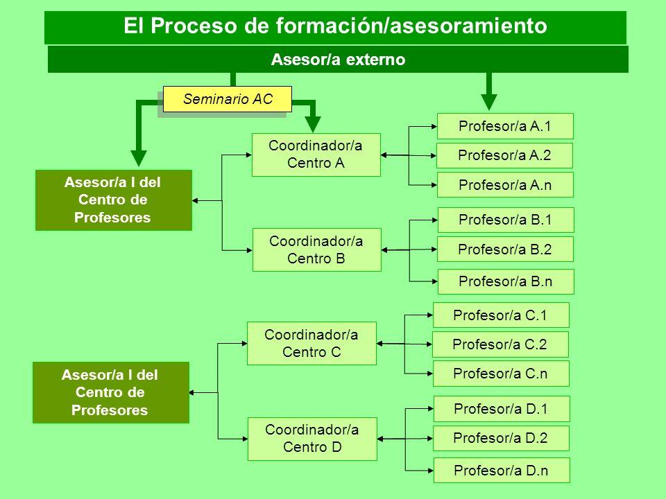 El Proceso de formación/asesoramiento