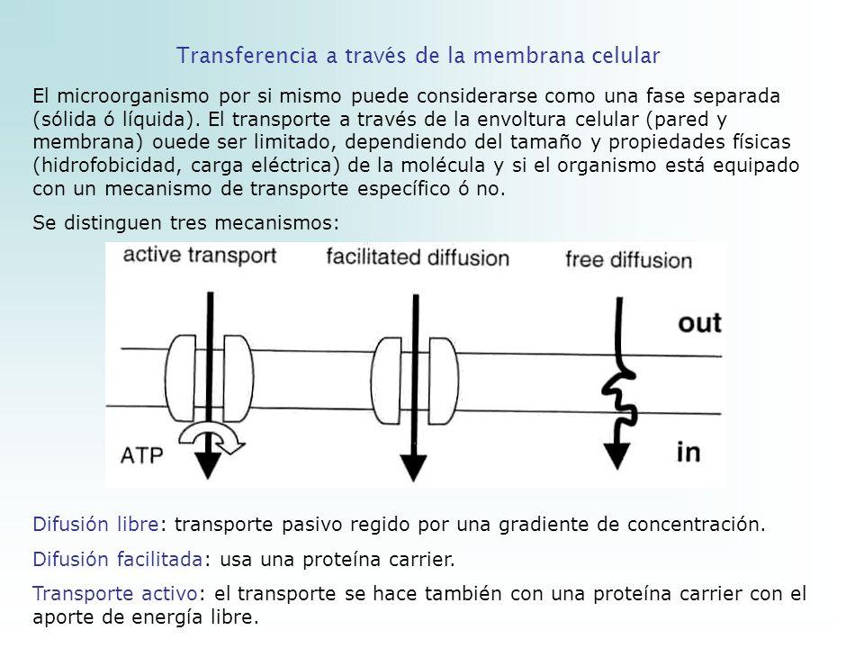 Transferencia a través de la membrana celular
