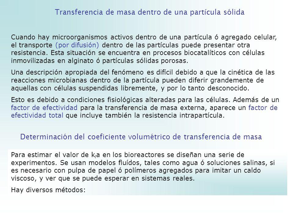 Transferencia de masa dentro de una partícula sólida
