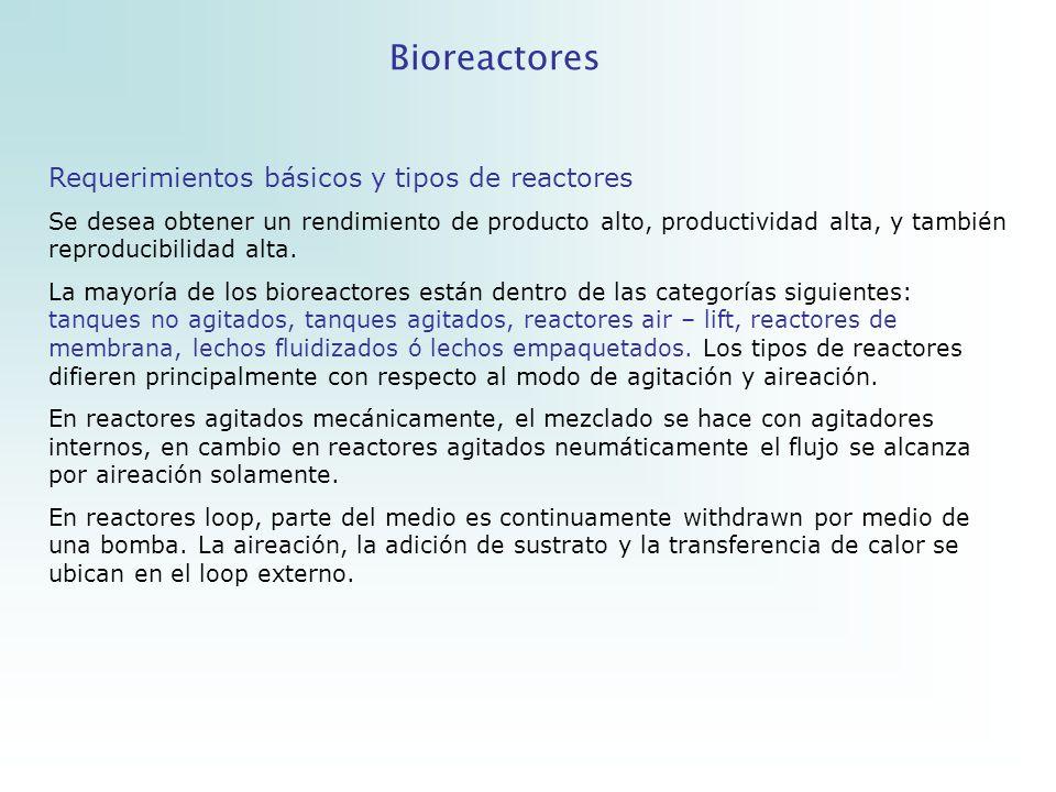 Bioreactores Requerimientos básicos y tipos de reactores