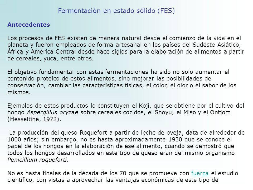 Fermentación en estado sólido (FES)