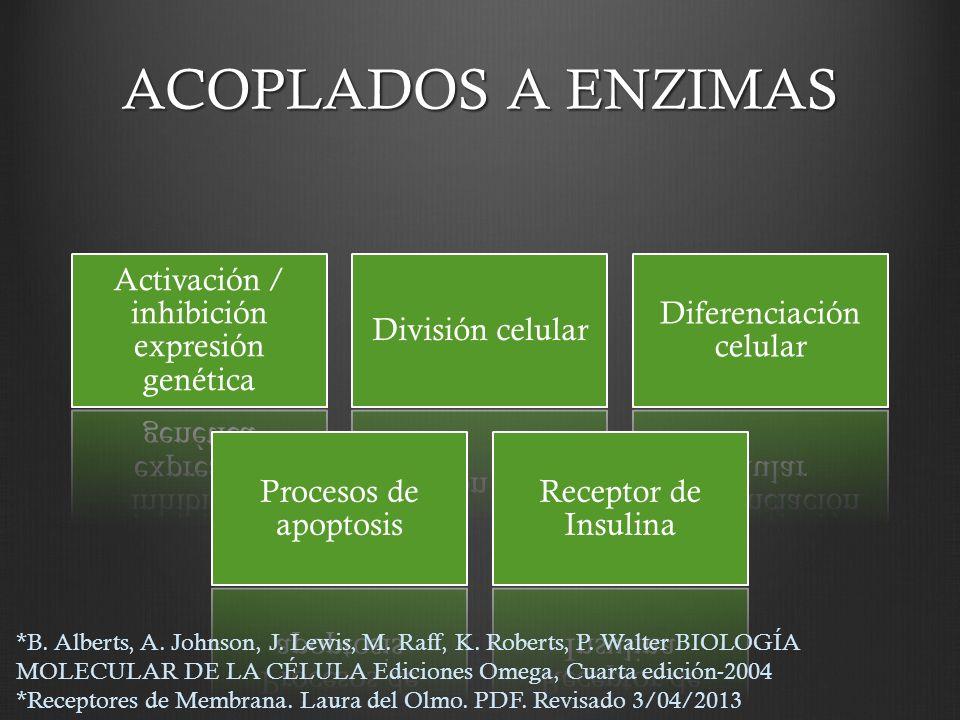 ACOPLADOS A ENZIMAS Activación / inhibición expresión genética