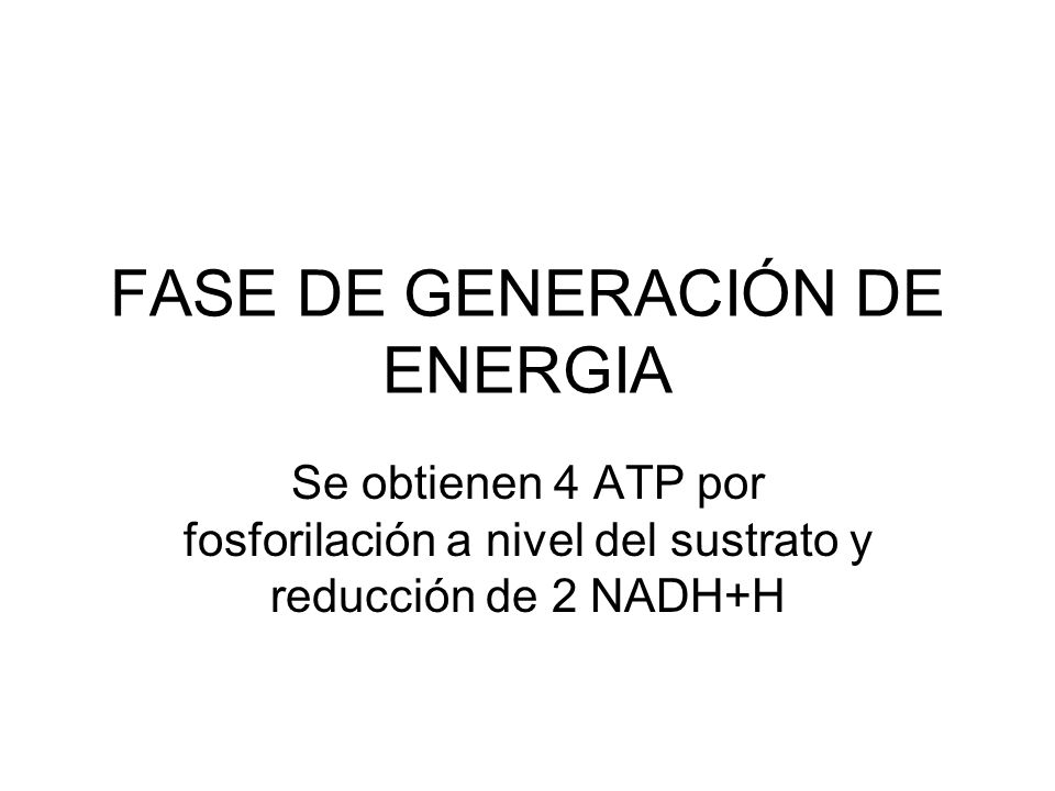 FASE DE GENERACIÓN DE ENERGIA