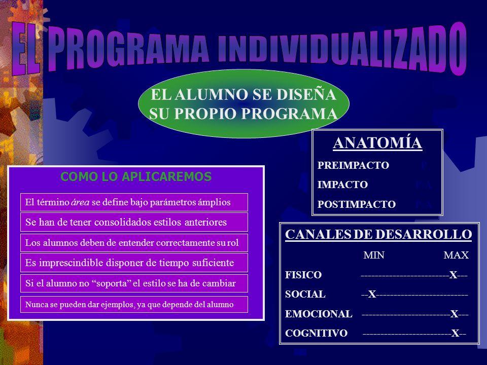 EL PROGRAMA INDIVIDUALIZADO