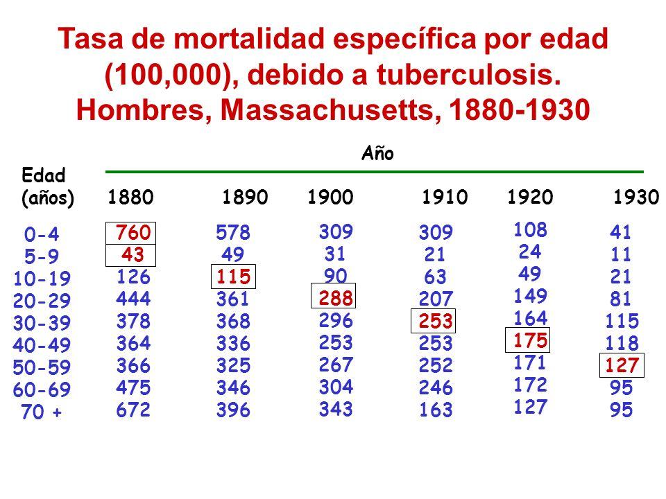 Tasa de mortalidad específica por edad (100,000), debido a tuberculosis. Hombres, Massachusetts, 1880-1930