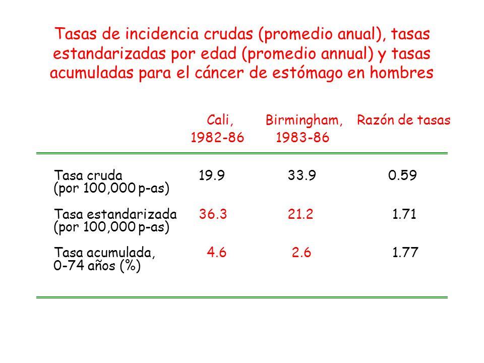 Tasas de incidencia crudas (promedio anual), tasas estandarizadas por edad (promedio annual) y tasas acumuladas para el cáncer de estómago en hombres