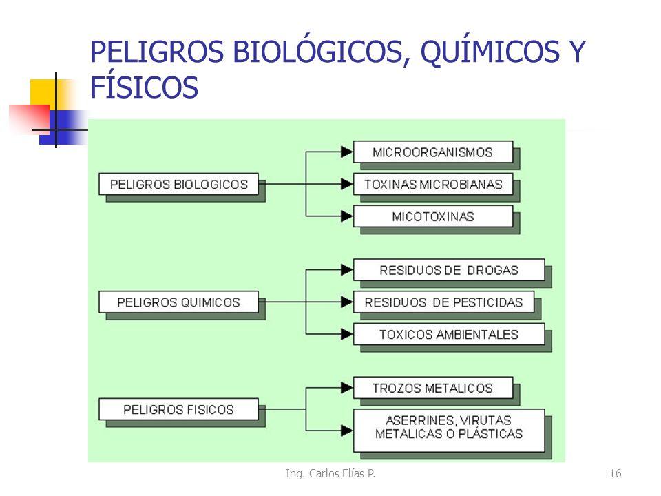 PELIGROS BIOLÓGICOS, QUÍMICOS Y FÍSICOS