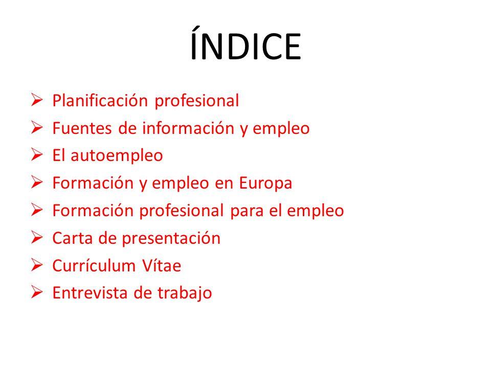 ÍNDICE Planificación profesional Fuentes de información y empleo ...