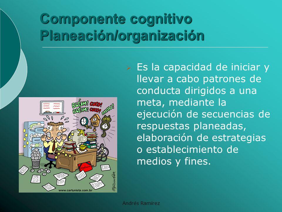 Componente cognitivo Planeación/organización