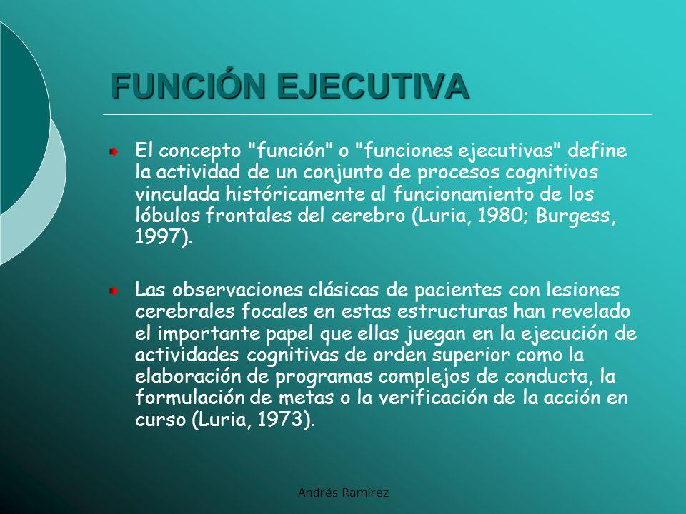 FUNCIÓN EJECUTIVA