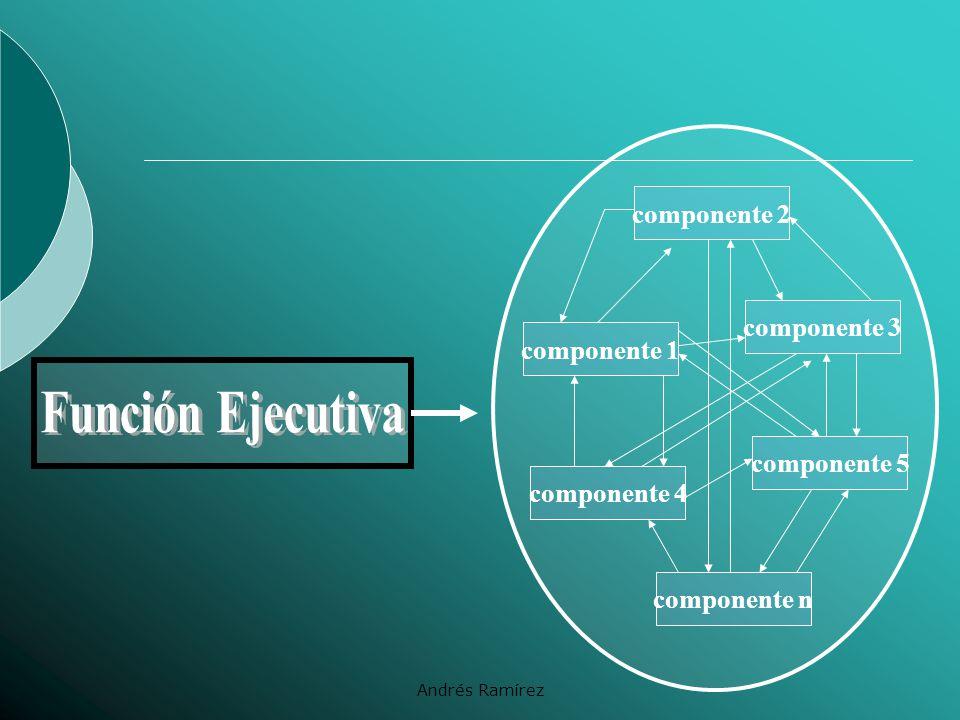 Función Ejecutiva componente 2 componente 3 componente 1 componente 5