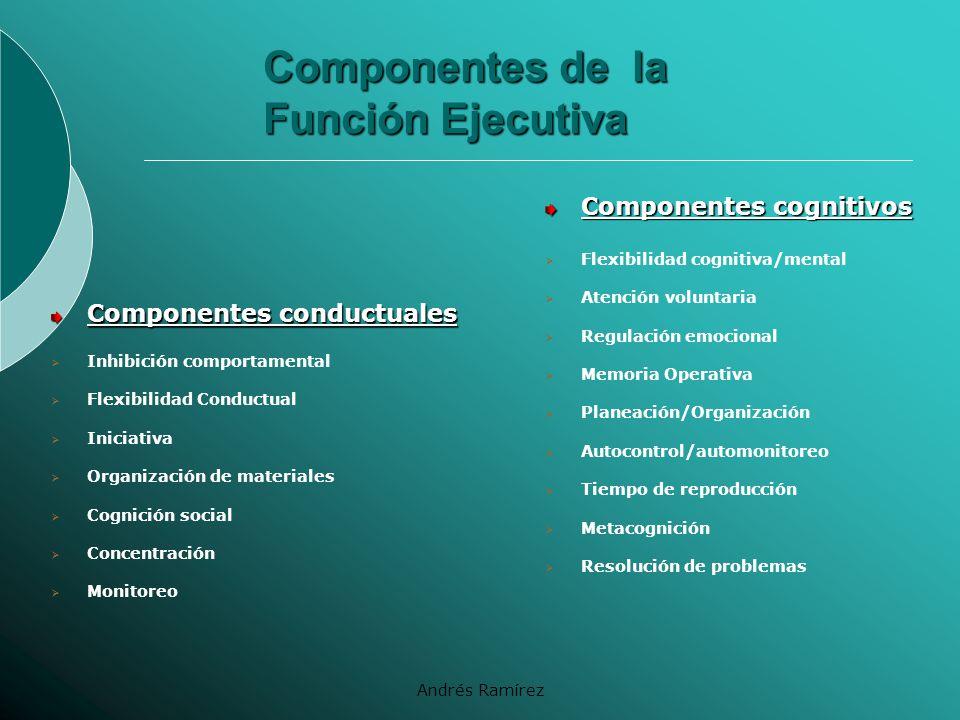Componentes de la Función Ejecutiva