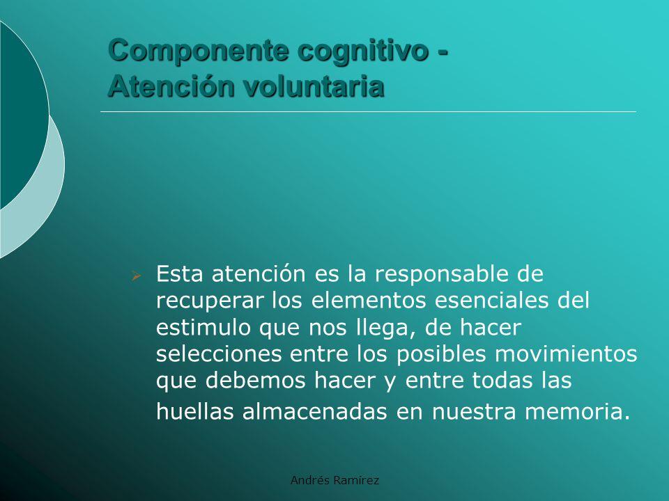 Componente cognitivo - Atención voluntaria
