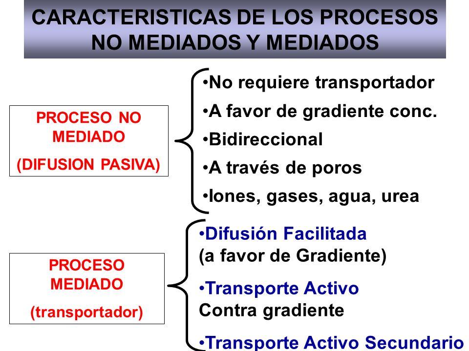 CARACTERISTICAS DE LOS PROCESOS NO MEDIADOS Y MEDIADOS