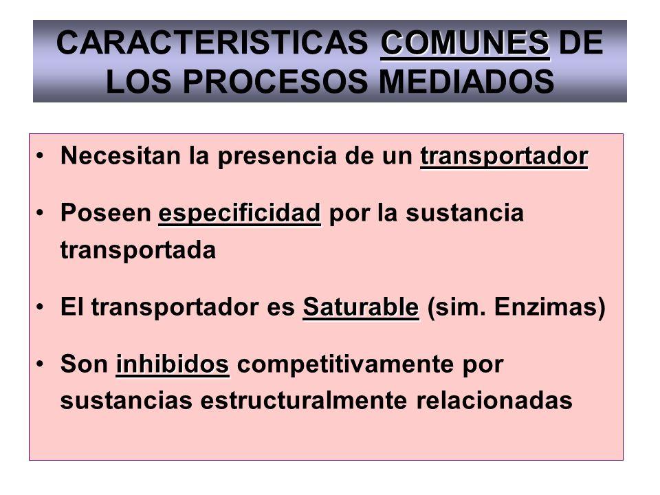 CARACTERISTICAS COMUNES DE LOS PROCESOS MEDIADOS