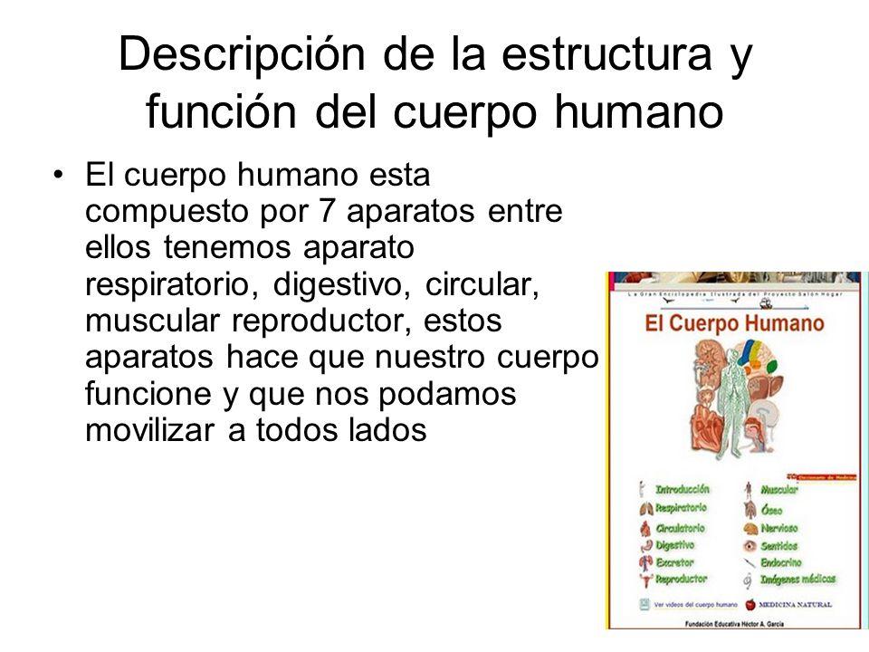 Descripción de la estructura y función del cuerpo humano