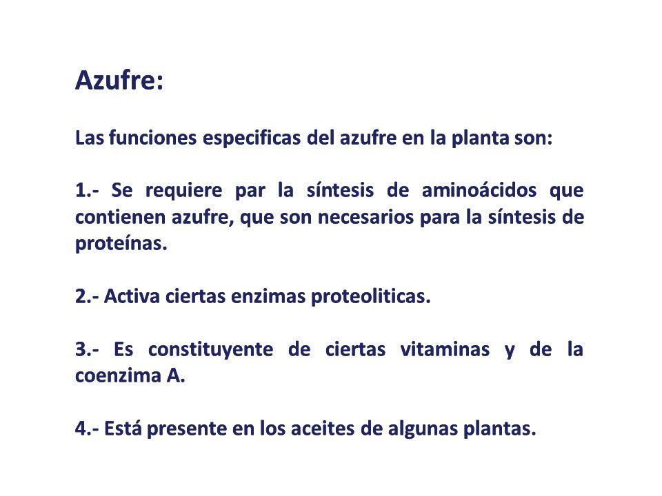 Azufre: Las funciones especificas del azufre en la planta son: