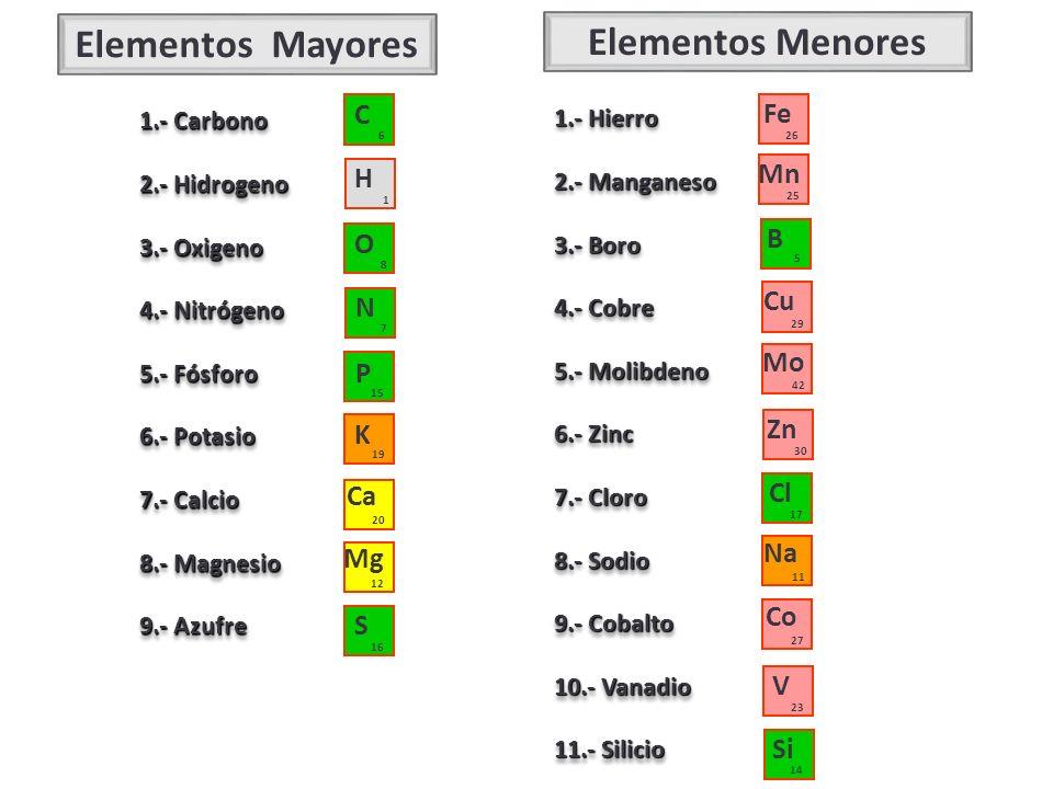 Elementos Mayores Elementos Menores