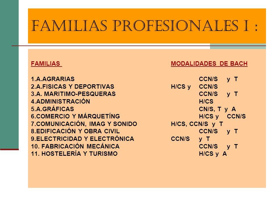 FAMILIAS PROFESIONALES I :