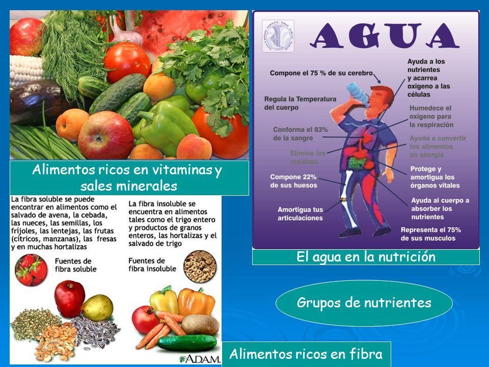 Alimentos ricos en vitaminas y sales minerales