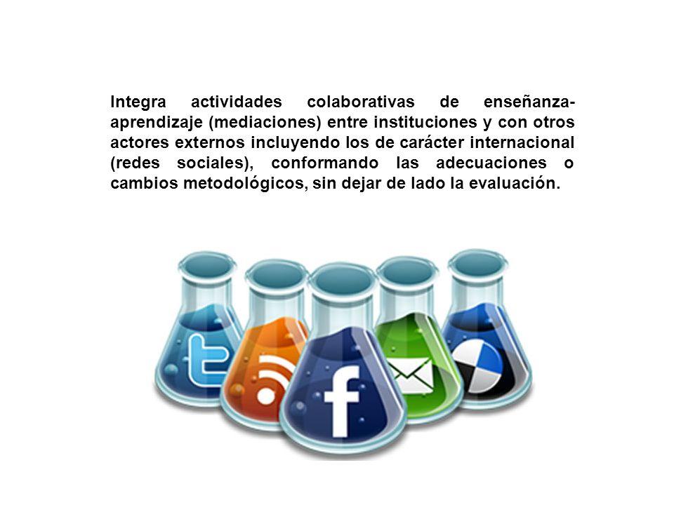 Integra actividades colaborativas de enseñanza-aprendizaje (mediaciones) entre instituciones y con otros actores externos incluyendo los de carácter internacional (redes sociales), conformando las adecuaciones o cambios metodológicos, sin dejar de lado la evaluación.